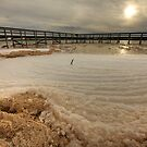 The Foam Phenomenon II - Lake Clifton WA by Chris Paddick