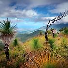 Mt Yarrabah, Cairns Australia by Rob Brown