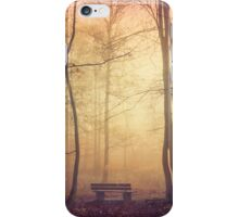 bench iPhone Case/Skin
