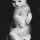 Our Kitten Posing like a 1940's bombshell. by Dirk Michael Dudat