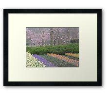 Keukenhof Gardens on a Rainy Day Framed Print