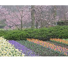 Keukenhof Gardens on a Rainy Day Photographic Print