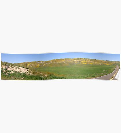 Blue Sky, Green Rolling Hills & California Wildflowers Poster