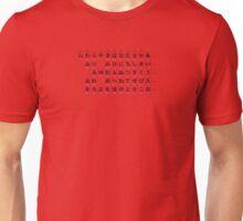 Hiragana Graph Unisex T-Shirt