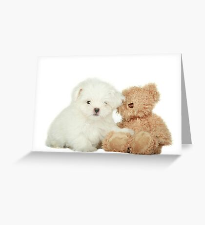 Noodles & Friend Greeting Card