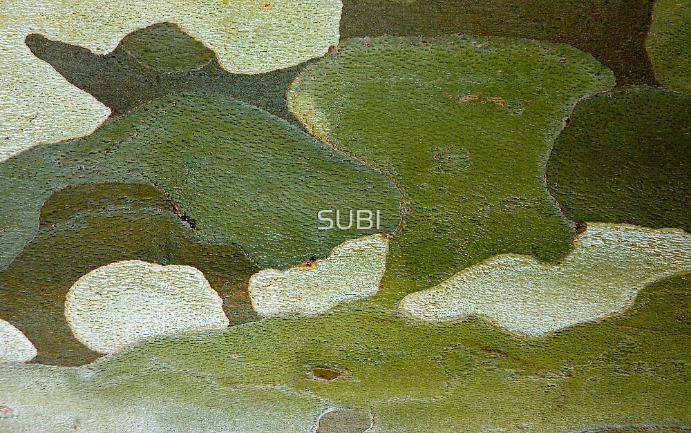 elephant hills by SUBI
