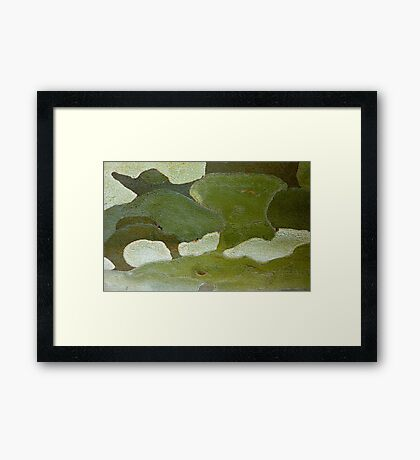 elephant hills Framed Print