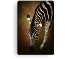 Z is for....Zebra Canvas Print