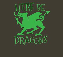 Here be Dragons Womens Fitted T-Shirt