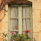 French Cottage Window by dawne polis