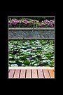 Resort Garden, Phuket, Thailand by prbimages