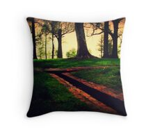 Serenity at Somerset Place Throw Pillow