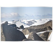 Snowy Mountians Poster