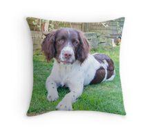Buster Relaxing Throw Pillow