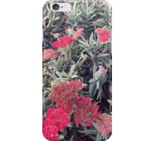 Australia Flora iPhone Case/Skin