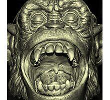Going Ape Photographic Print