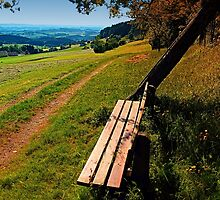 The bench and the summer by Patrick Jobst