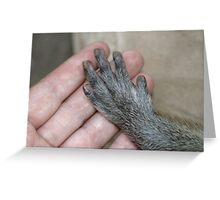 Monkey and Human Hands Greeting Card