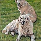 Gina & Boomer Golden Retriever by Nicole Zeug