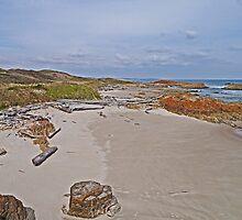 Beach near Arthurs Creek, Tasmania by Margaret  Hyde