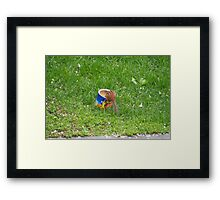 Falling In the the Peanut Can Framed Print