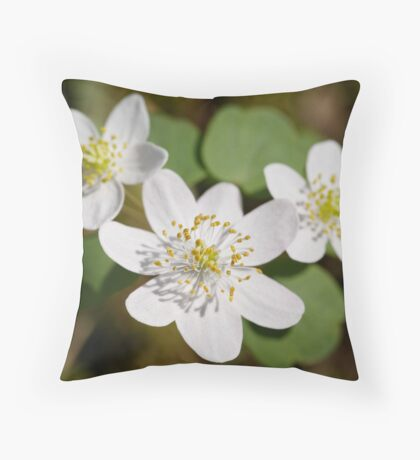 Rue Anemone Throw Pillow