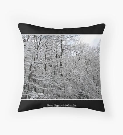 Snow scene #4 Throw Pillow