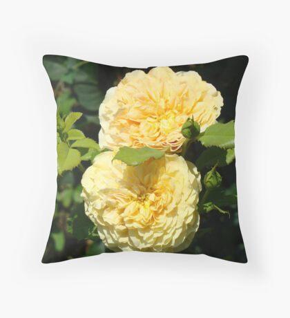 Beautiful Double Rose Yellow Peach Rose Flowers art Throw Pillow