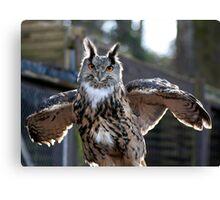 Gandalf the Eagle Owl Canvas Print