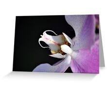 This is just orchid! Greeting Card
