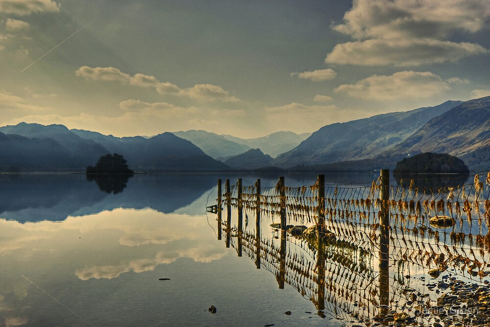 Derwentwater......Fence Reflections by Jamie  Green
