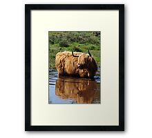 Who's that? Framed Print