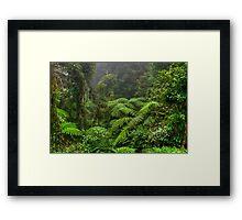 Border Ranges Framed Print