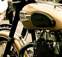 Vintage Triumph Thunderbird by Lou Wilson