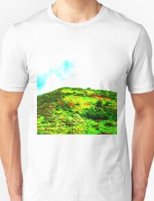 Oakleigh Road Park T-Shirt