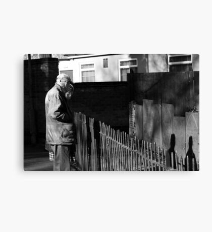 Looking Up Old Friends? Canvas Print