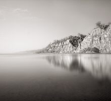 Dreamscape at the Scarborough Bluffs by Steve Silverman