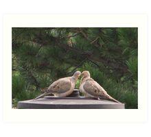 The kissing birds Art Print