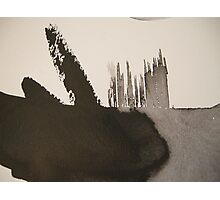 seepage..... Photographic Print