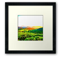Sunrise Kingdom Framed Print