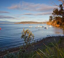 Boats Moored at Tinderbox by Chris Cobern