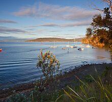 Boats Moored at Tinderbox by Chris Cobern