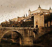 Toledo (Spain)  by Mariano57