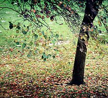 ~ Autumn Carpet ~ by Lynda Heins