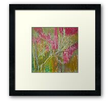 California Spring: Pink flame tree Framed Print
