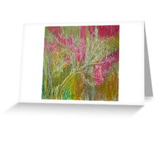 California Spring: Pink flame tree Greeting Card