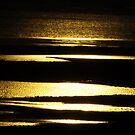 golden waters by Lenny La Rue, IPA