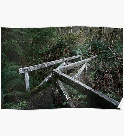 Mossy Bridge in the Redwood Forest Poster