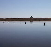 Still Water Fence Reflection by Michelle Munday