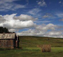 Alberta Skies by Michael Collier